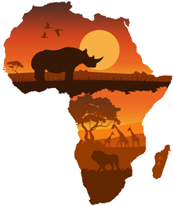 African Safari Packages, African Safaris, Africa Tailor Made Tours, top-rated